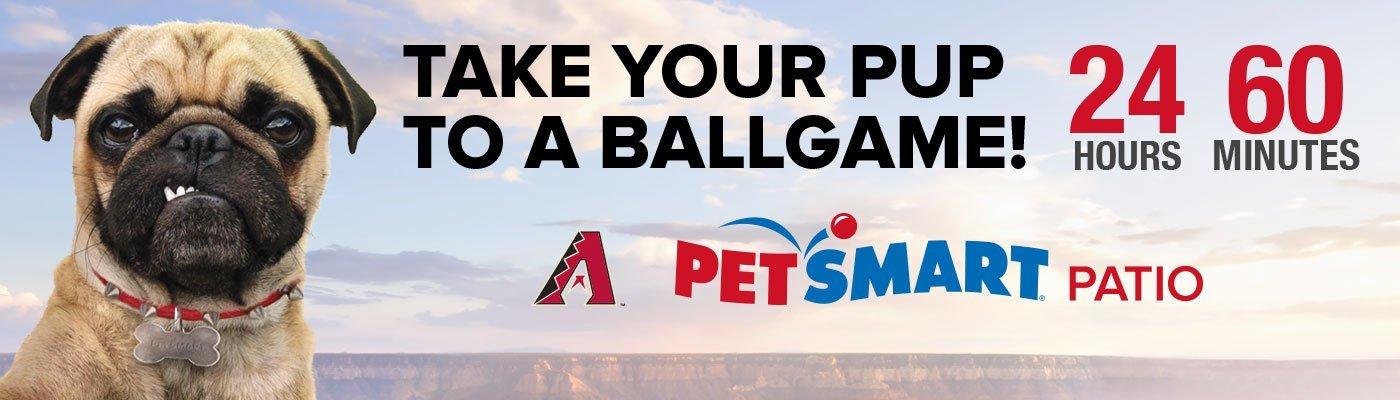 Take Pup Ballgame Digital Countdown