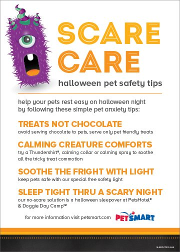 PetSmart-Halloween-Safety-Card_10-2016