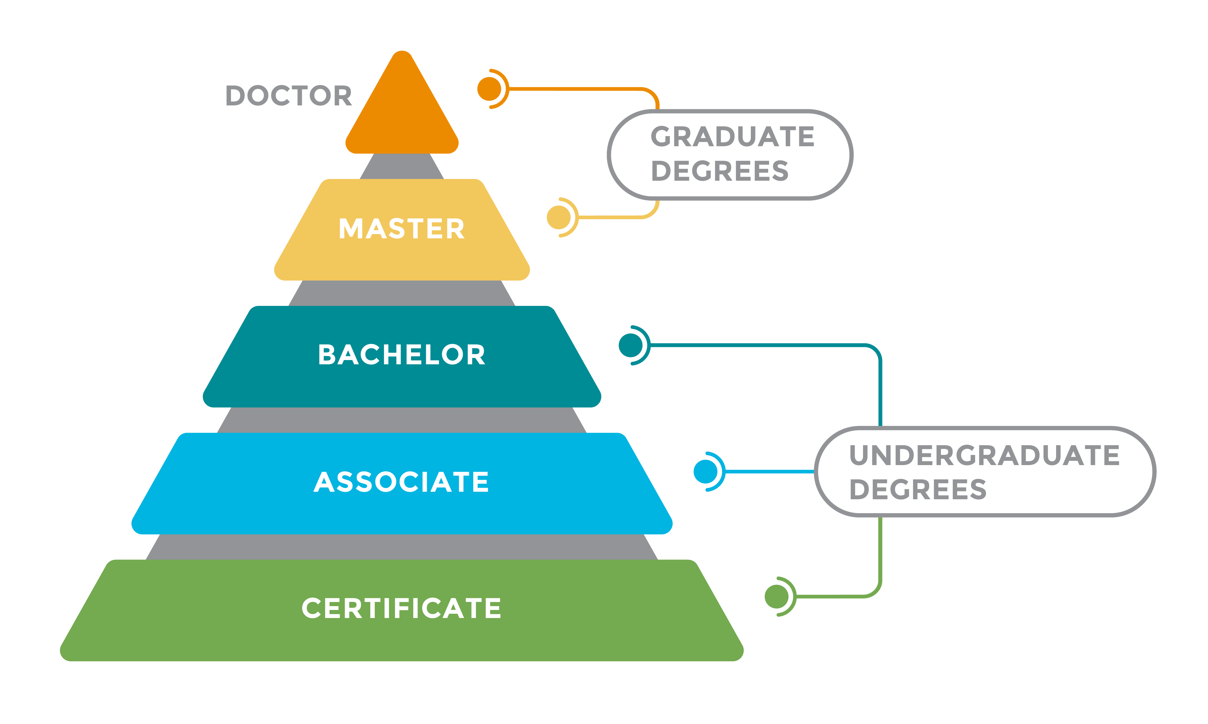 Degree Pyramid infographic